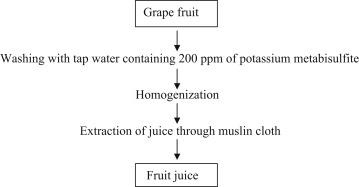WM Fresh fruit 0.8 Gal// 3L sun tea
