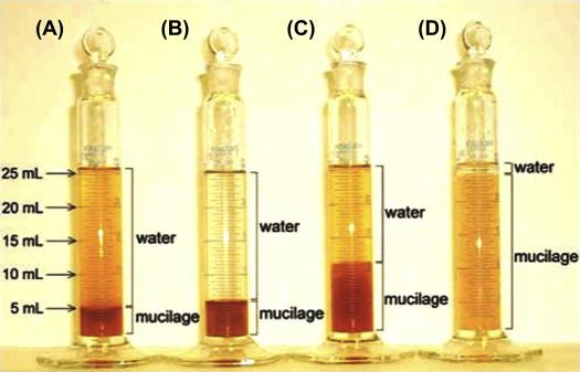 Traditional Herbal Medicine Pharmacognosy And Pharmacopoeial