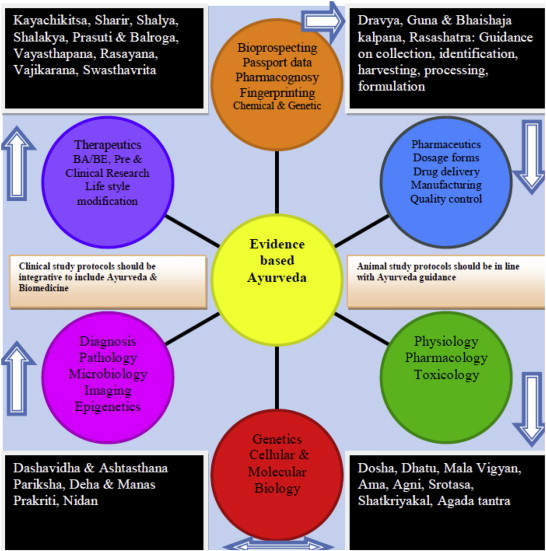 Traditional Medicine-Inspired Evidence-Based Approaches to
