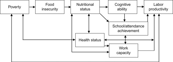 Nutrition Policy - an overview