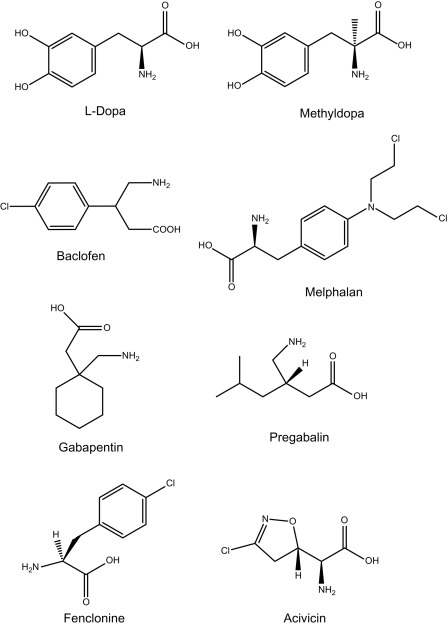 Pregabalin - an overview | ScienceDirect Topics