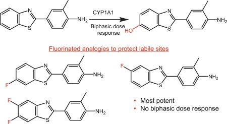 Buspirone - an overview | ScienceDirect Topics