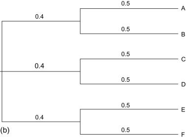 Reconstructing the Phylogeny: Computational Methods