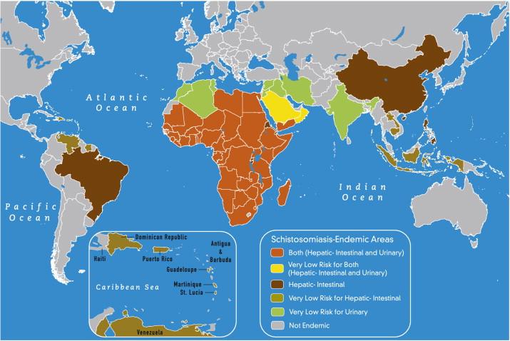 Analizele bazate pe date mari dezvăluie șoferii la nivel național pentru schistosomioza endemică