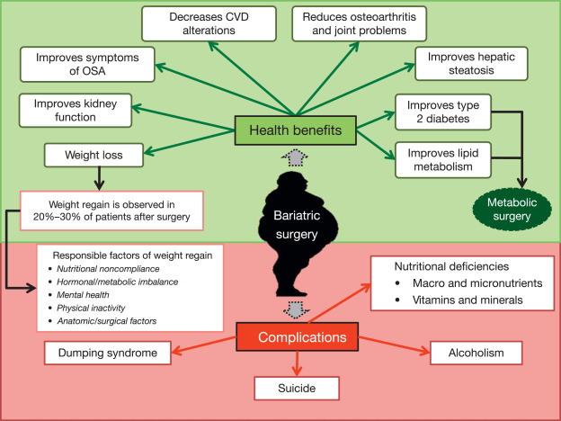 Bariatric Surgery - an overview | ScienceDirect Topics