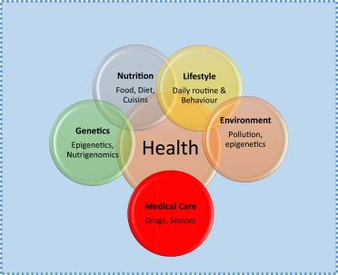 Determinants of Health - an overview   ScienceDirect Topics