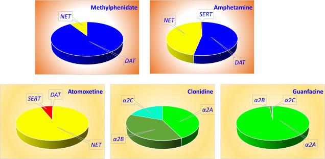 Lisdexamfetamine - an overview | ScienceDirect Topics