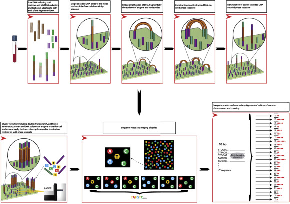 Next Generation Sequencing as a Tool for Noninvasive