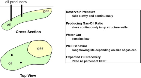 Production Profile - an overview | ScienceDirect Topics