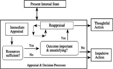 social structure definition