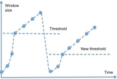 Congestion Window - an overview | ScienceDirect Topics