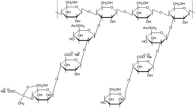 Xanthan Gum - an overview | ScienceDirect Topics