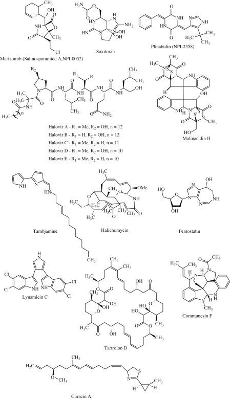 Marine Metabolites Oceans Of Opportunity