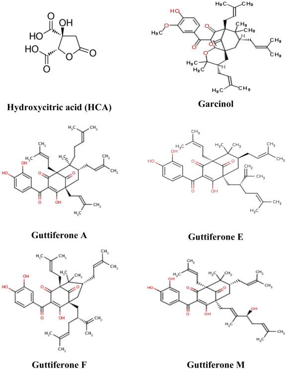 Benzophenone Derivative - an overview | ScienceDirect Topics