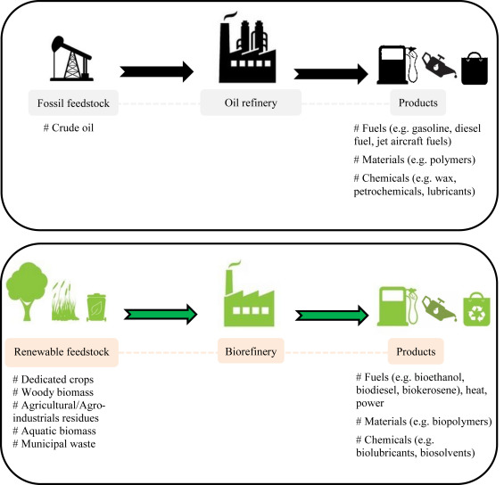 Image result for biomass biorefinery rural development logistics