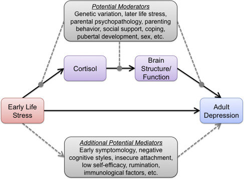 Early Life Adversity and Risk for Depression: Alterations in