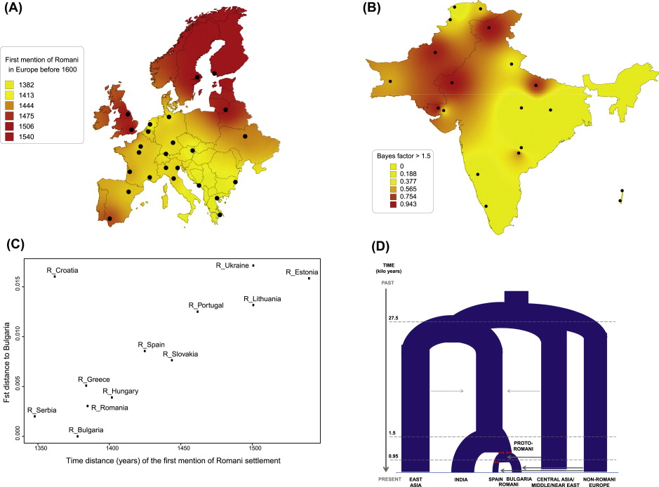 Human Population Movements: A Genetic Perspective - ScienceDirect