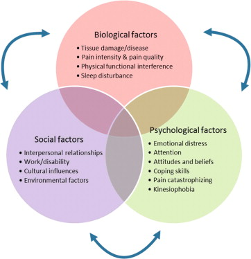 Biopsychosocial Model An Overview Sciencedirect Topics