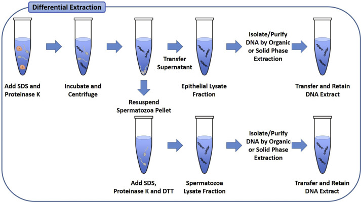 Differential Extraction An Overview Sciencedirect Topics
