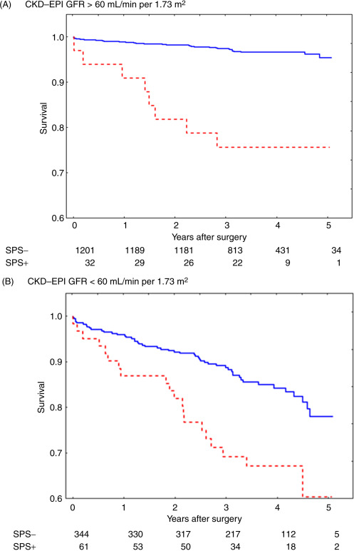 Cystatin C as a Multifaceted Biomarker in Kidney Disease and