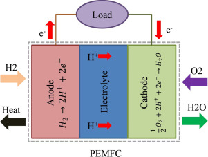 Proton-Exchange Membrane Fuel Cells - an overview | ScienceDirect Topics