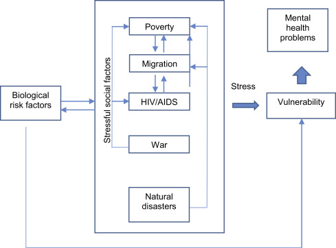 Natural Disaster - an overview | ScienceDirect Topics