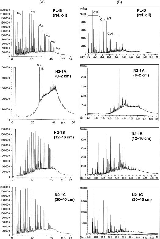chapter 29 lab activity rock correlation answer key