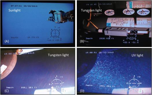 Water column sampling for forensics - ScienceDirect