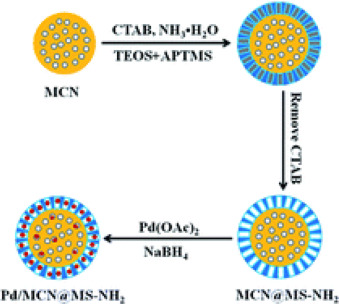 Palladium Complexes and Nanoparticles Encapsulated by