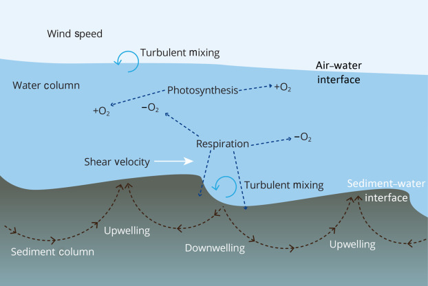 Dissolved Oxygen - an overview | ScienceDirect Topics