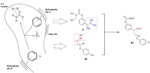 Challenges in Designing Theutic Agents for Treating ... on