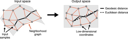 Geodesic Distance - an overview   ScienceDirect Topics
