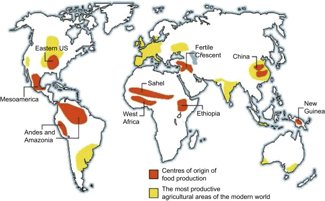 Cultural Influences - an overview | ScienceDirect Topics