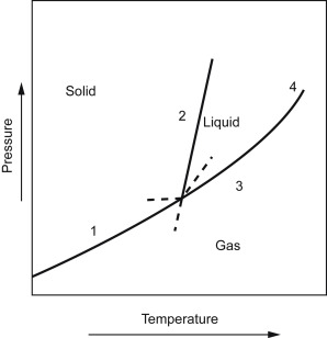 different types of phase diagrams