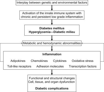 Cytokines in Diabetes and Diabetic Complications - ScienceDirect