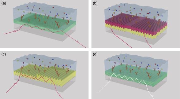 Enjoyable Evanescent Field Effectbased Nanobiosensors For Agro Machost Co Dining Chair Design Ideas Machostcouk