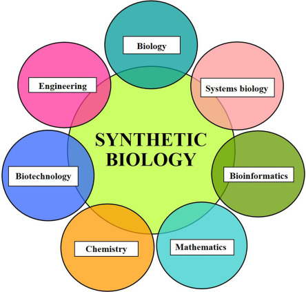 Synthetic Biology Overview And Applications ScienceDirect