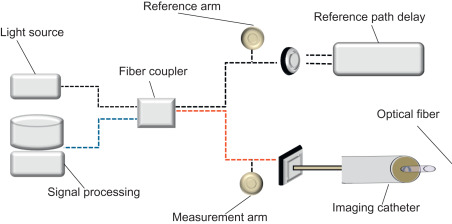 Fiber Coupler - an overview | ScienceDirect Topics