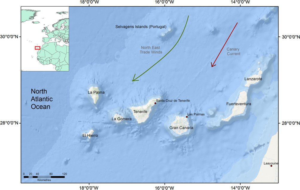 Canary Islands - ScienceDirect