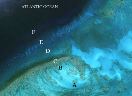 The Turks and Caicos Islands - ScienceDirect
