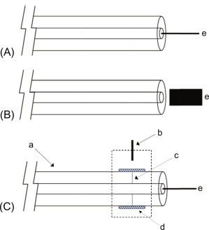 Instrumental Platforms for Capillary and Microchip Electromigration