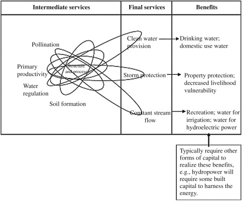 Trade-off Analyses of Ecosystem Services in Nigerian Waters