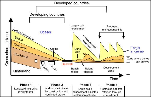 Dunes - an overview | ScienceDirect Topics