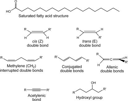 general structures and functional groups that can be found in naturally