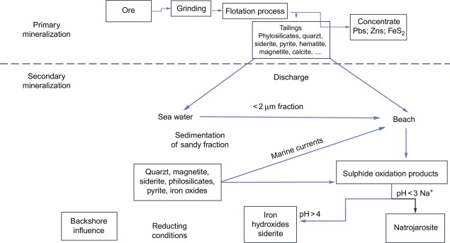 Direct Discharger - an overview | ScienceDirect Topics