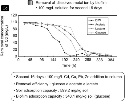 Heavy Metals Contamination Of Mine Soil Their Risk Assessment And