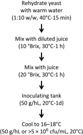 Biotechnology of Ice Wine Production - ScienceDirect