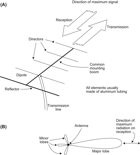 Antenna Length - an overview   ScienceDirect Topics