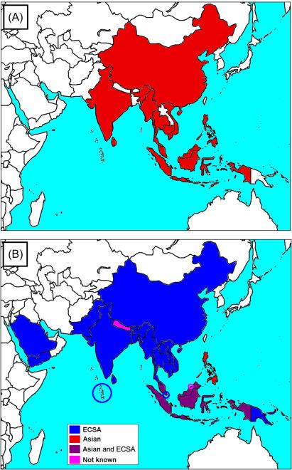Chikungunya and Zika Virus in Asia - ScienceDirect