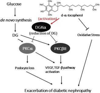 diabetes de endocrinólogo stephen gallacher